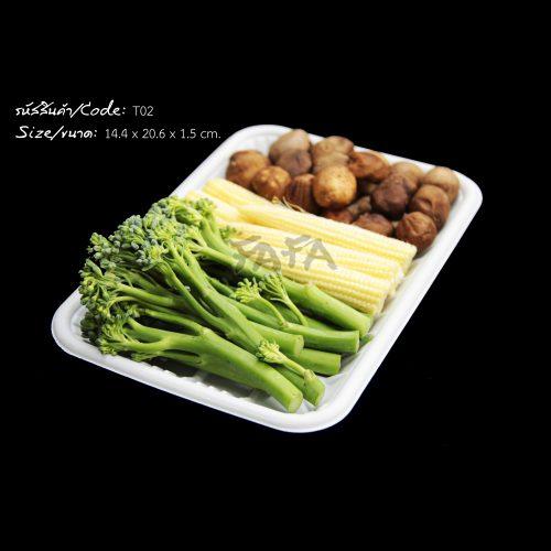 ถาดใส่อาหาร T02