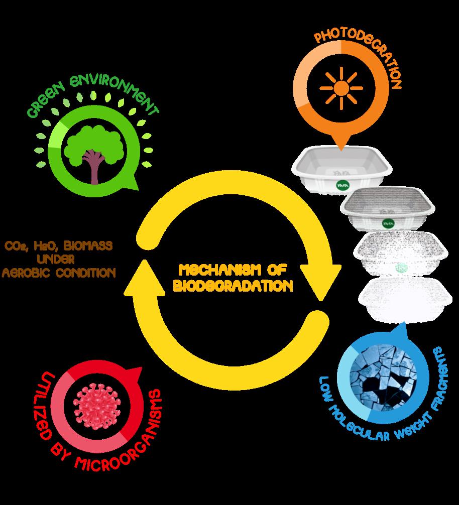 FAFA Nano Biotechnology cycle